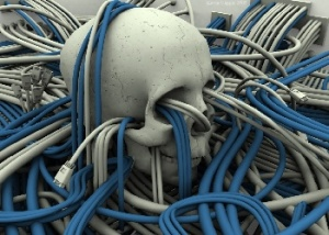 skull net